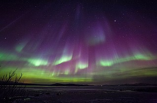 Land of the Northern Lights to Iceland – Magellan – 04 March 2020 – 12 nights – up to 65% off!